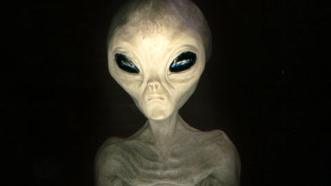 race alien illustration