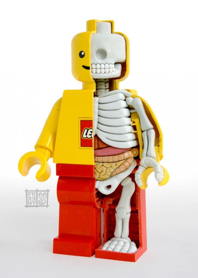 personnage non joueur anatomie